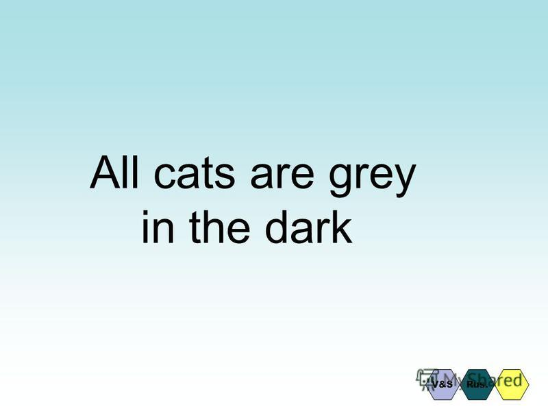 All cats are grey in the dark Rus.V&S