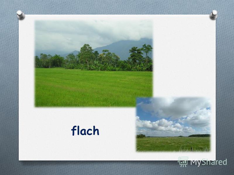 flach
