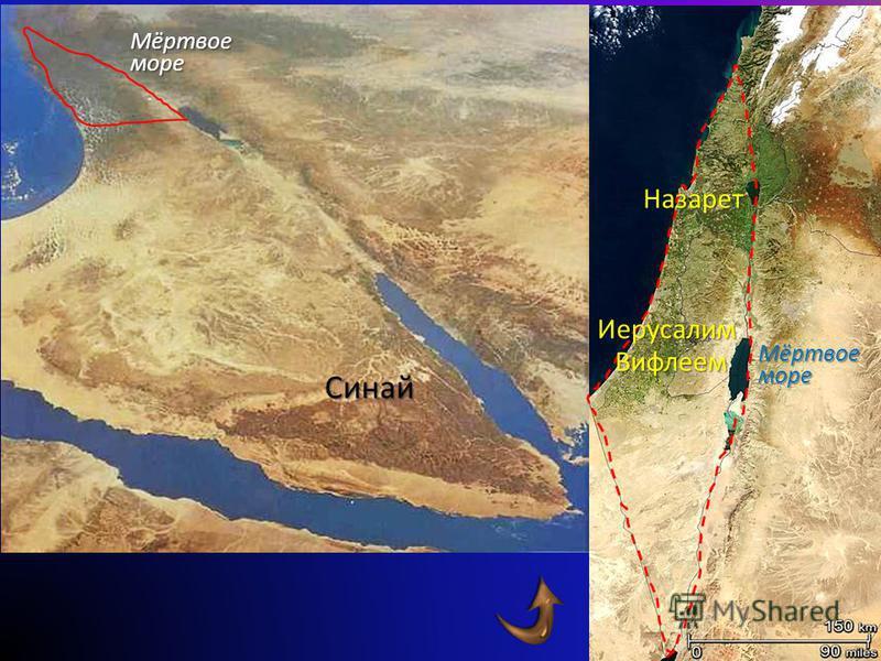 Римская империя Палестина Египет Средиземное море