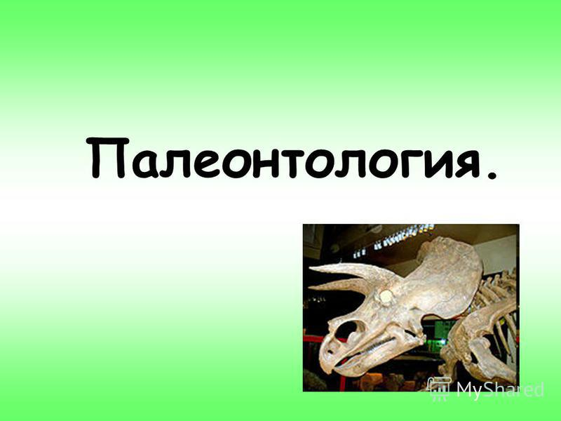 Палеонтология.