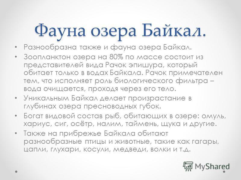 Фауна озера Байкал. Разнообразна также и фауна озера Байкал. Зоопланктон озера на 80% по массе состоит из представителей вида Рачок эпишура, который обитает только в водах Байкала. Рачок примечателен тем, что исполняет роль биологического фильтра – в