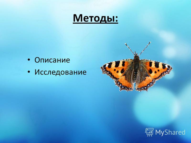 Методы: Описание Исследование