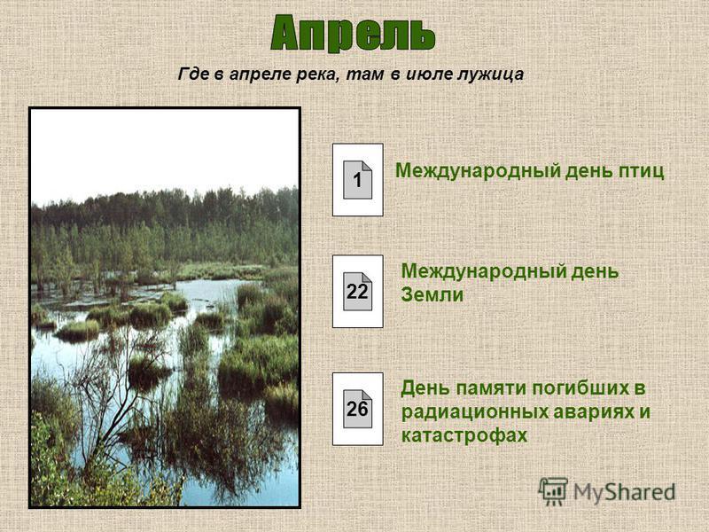 Где в апреле река, там в июле лужица Международный день птиц Международный день Земли День памяти погибших в радиационных авариях и катастрофах 1 22 26