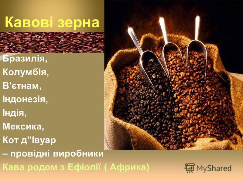 Кавові зерна Бразилія, Колумбія, В'єтнам, Індонезія, Індія, Мексика, Кот дІвуар – провідні виробники Кава родом з Ефіопії ( Африка)