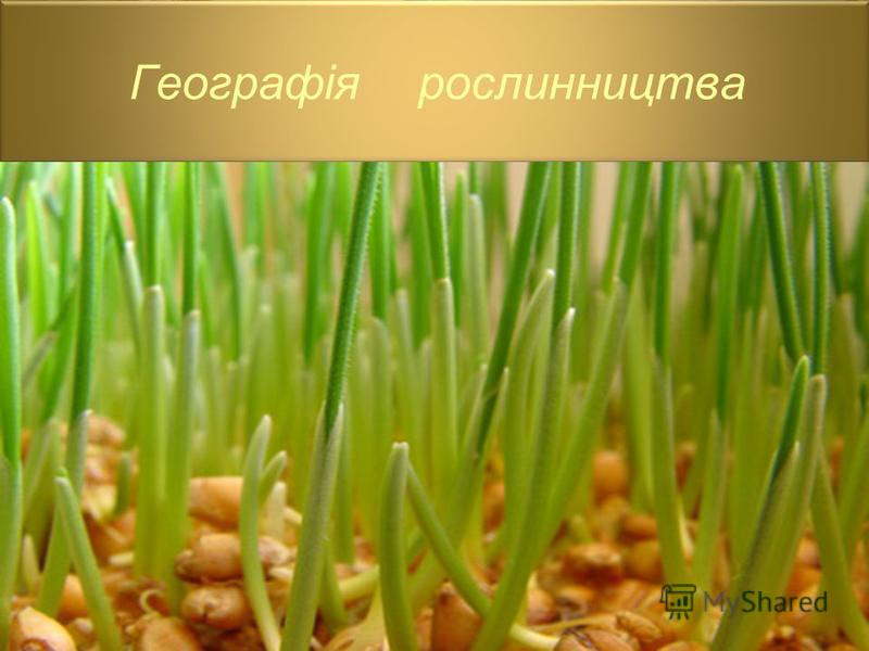 Географія рослинництва
