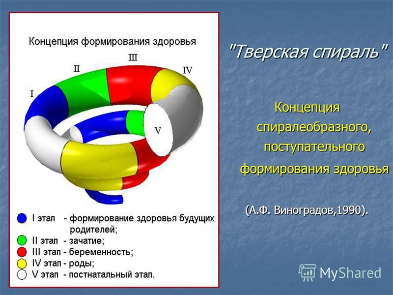 Концепция спиралеобразного, поступательного формирования здоровья (А.Ф. Виноградов,1990). Тверская спираль