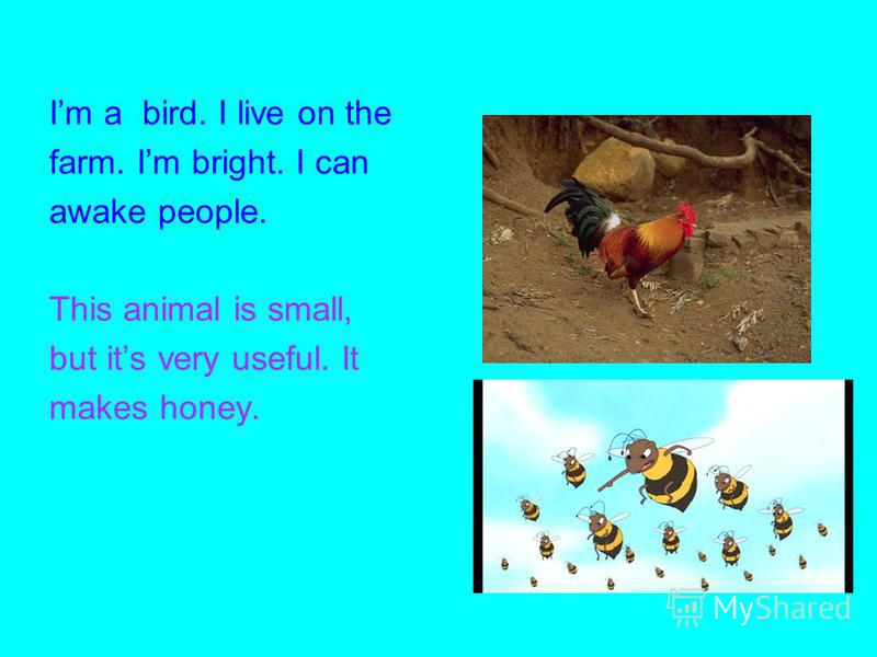 Im a bird. I live on the farm. Im bright. I can awake people. This animal is small, but its very useful. It makes honey.