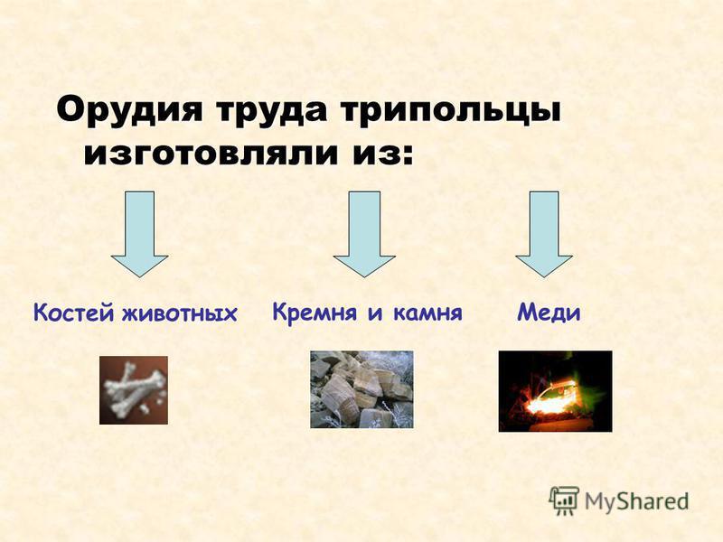 Орудия труда трипольцы изготовляли из: Костей животных Кремня и камня Меди