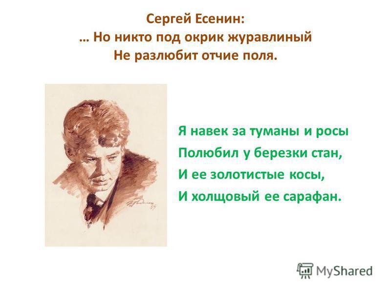 Сергей Есенин: … Но никто под окрик журавлиный Не разлюбит отчие поля. Я навек за туманы и росы Полюбил у березки стан, И ее золотистые косы, И холщовый ее сарафан.