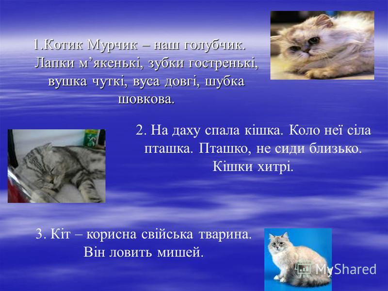1.Котик Мурчик – наш голубчик. Лапки мякенькі, зубки гостренькі, вушка чуткі, вуса довгі, шубка шовкова. 2. На даху спала кішка. Коло неї сіла пташка. Пташко, не сиди близько. Кішки хитрі. 3. Кіт – корисна свійська тварина. Він ловить мишей.