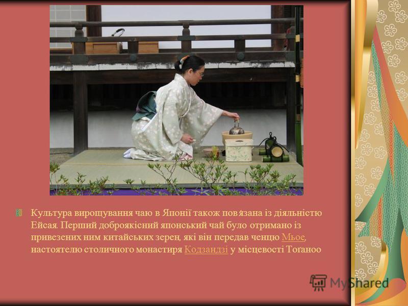 Культура вирощування чаю в Японії також пов ' язана із діяльністю Ейсая. Перший доброякісний японський чай було отримано із привезених ним китайських зерен, які він передав ченцю Мьое, настоятелю столичного монастиря Кодзандзі у місцевості Тоґаноо Мь