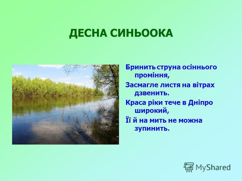 ДЕСНА СИНЬООКА Бринить струна осіннього проміння, Засмагле листя на вітрах дзвенить. Краса ріки тече в Дніпро широкий, Її й на мить не можна зупинить.