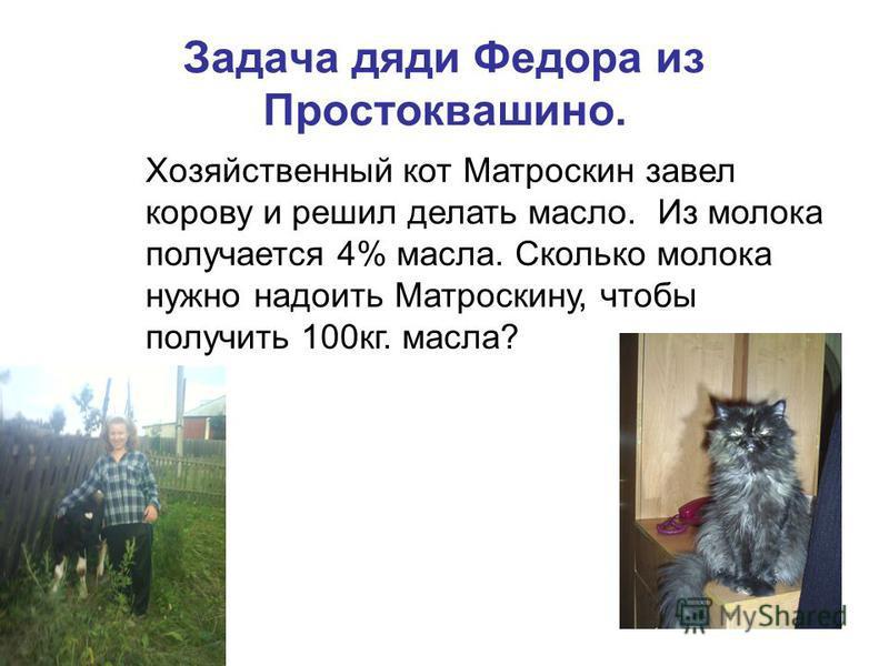 Задача дяди Федора из Простоквашино. Хозяйственный кот Матроскин завел корову и решил делать масло. Из молока получается 4% масла. Сколько молока нужно надоить Матроскину, чтобы получить 100 кг. масла?
