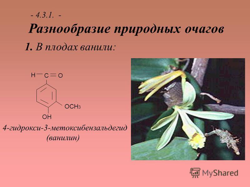 - 4.3.1. - Разнообразие природных очагов 1. В плодах ванили: ОСН 3 ОН СО Н 4-гидрокси-3-метоксибензальдегид (ванилин)