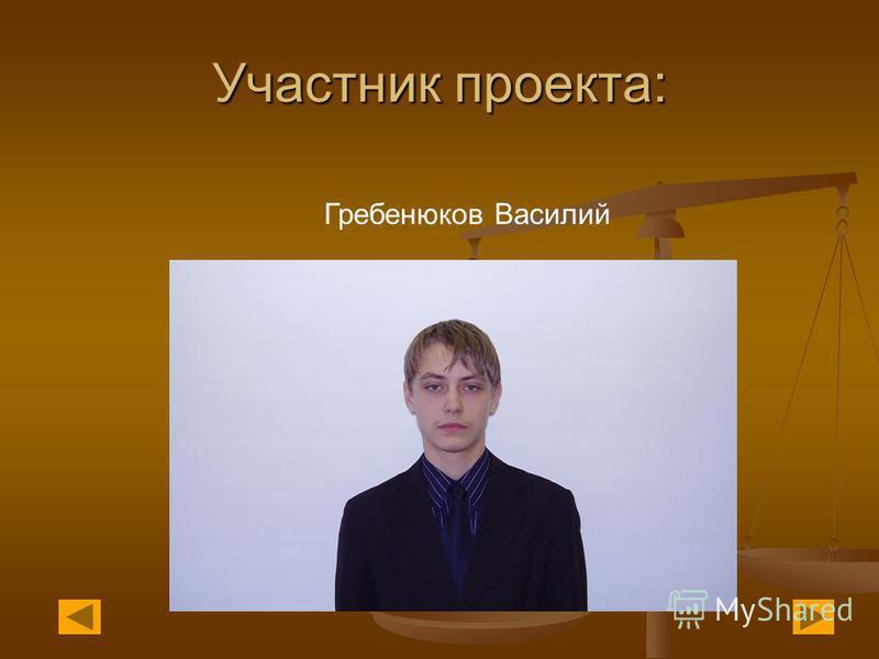 Участник проекта: Гребенюков Василий