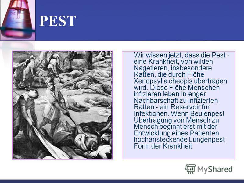 PEST Wir wissen jetzt, dass die Pest - eine Krankheit, von wilden Nagetieren, insbesondere Ratten, die durch Flöhe Xenopsylla cheopis übertragen wird. Diese Flöhe Menschen infizieren leben in enger Nachbarschaft zu infizierten Ratten - ein Reservoir