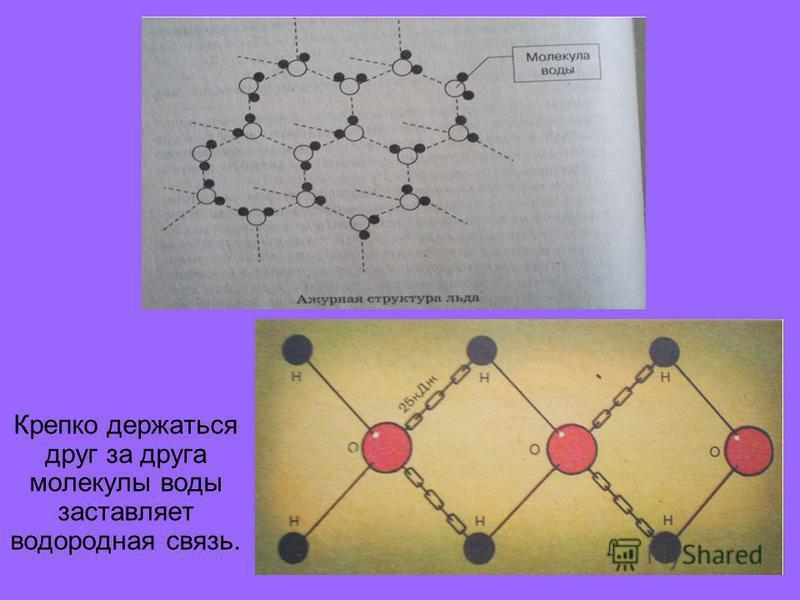 Водородная связь. Наличие значительного дипольного момента у воды приводит к тому, что ее молекулы- магнитики сильно притягиваются друг к другу. Они могут объединяться попарно и даже в квартеты.
