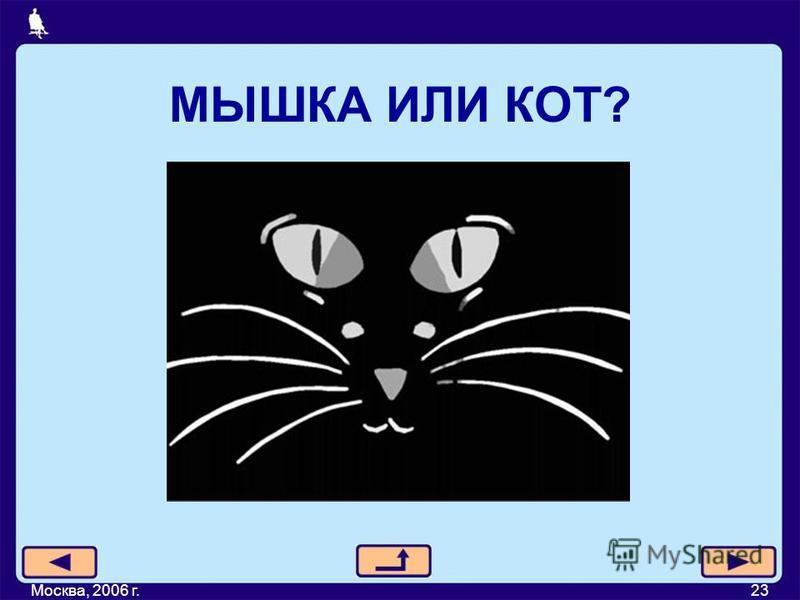 МЫШКА ИЛИ КОТ? Москва, 2006 г.23