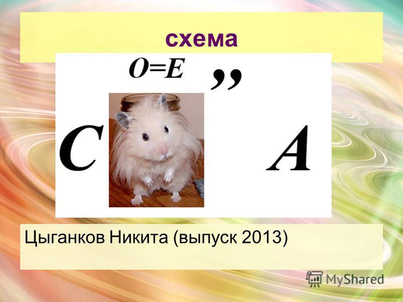 схема Цыганков Никита (выпуск 2013)