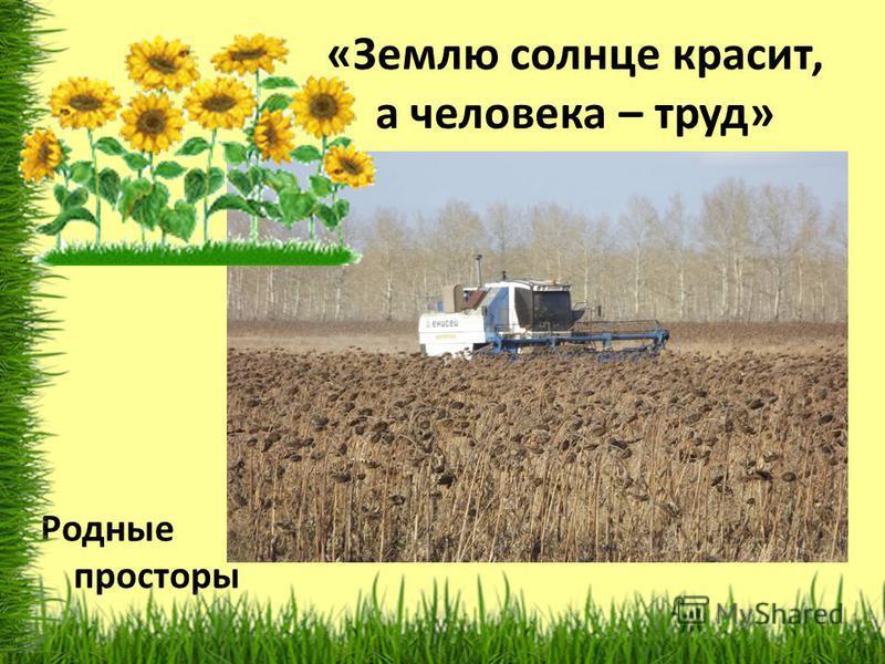 «Землю солнце красит, а человека – труд» Родные просторы