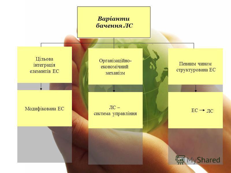 Варіанти бачення ЛС Варіанти бачення ЛС Цільова інтеграція елементів ЕС Організаційно- економічний механізм Модифікована ЕС ЛС – система управління Певним чином структурована ЕС ЕС ЛС