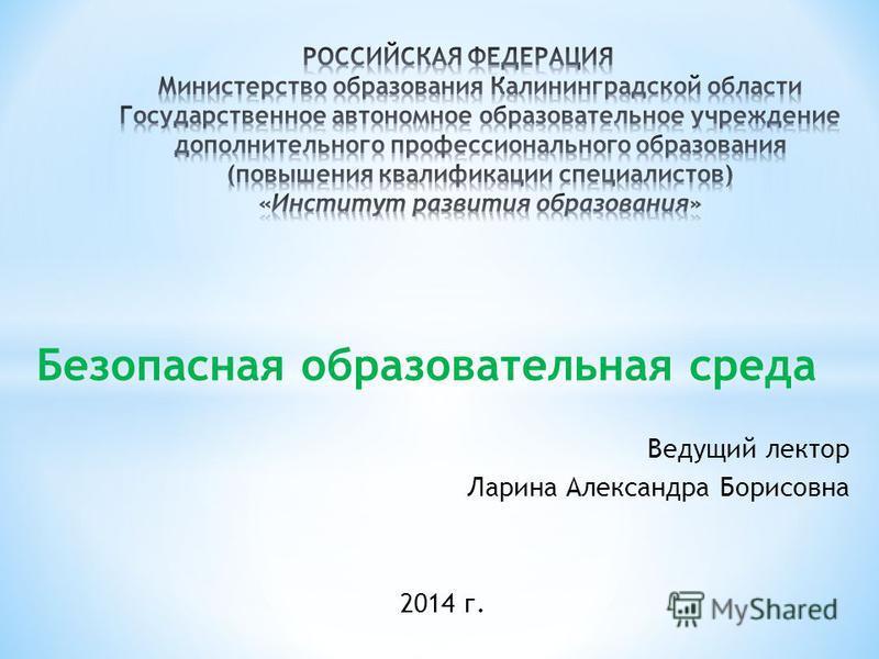 Безопасная образовательная среда Ведущий лектор Ларина Александра Борисовна 2014 г.