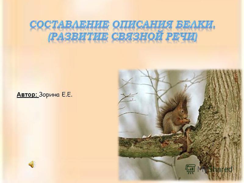 Автор: Зорина Е.Е.