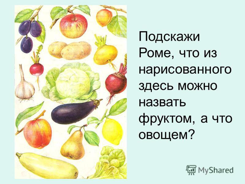 Подскажи Роме, что из нарисованного здесь можно назвать фруктом, а что овощем?