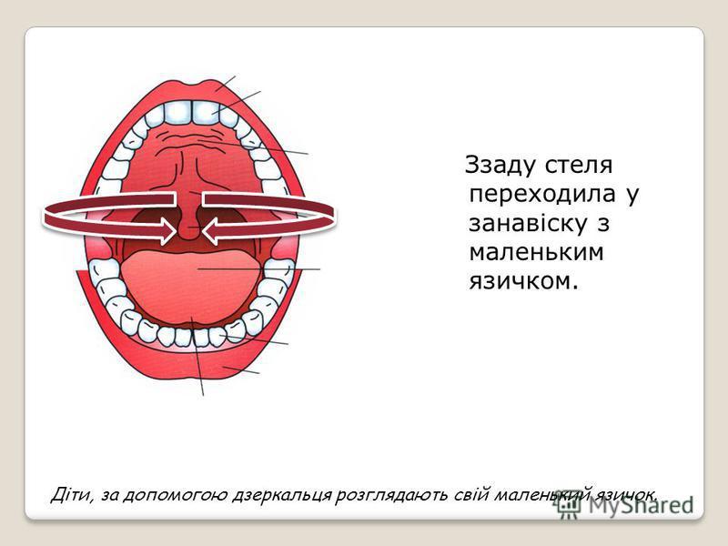 А стеля була тверда і називалася піднебіння. Піднебіння нерівне і нагадує купол. Передня частина стелі - піднебіння закінчується маленькими бугорками. Це альвеоли. Вони розташовані за верхніми зубами. Діти піднімають язик угору, знаходять ним стелю –