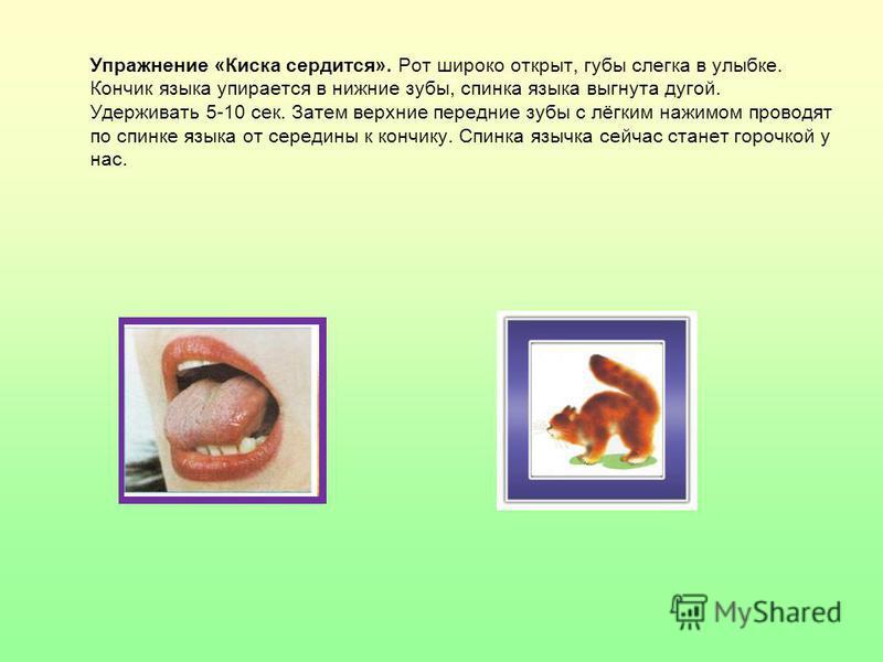 Упражнение «Киска сердится». Рот широко открыт, губы слегка в улыбке. Кончик языка упирается в нижние зубы, спинка языка выгнута дугой. Удерживать 5-10 сек. Затем верхние передние зубы с лёгким нажимом проводят по спинке языка от середины к кончику.