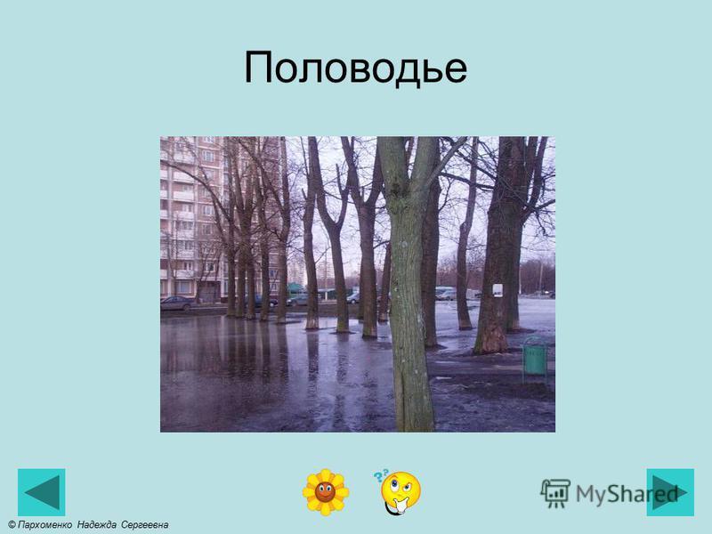 Снеготаяние © Пархоменко Надежда Сергеевна