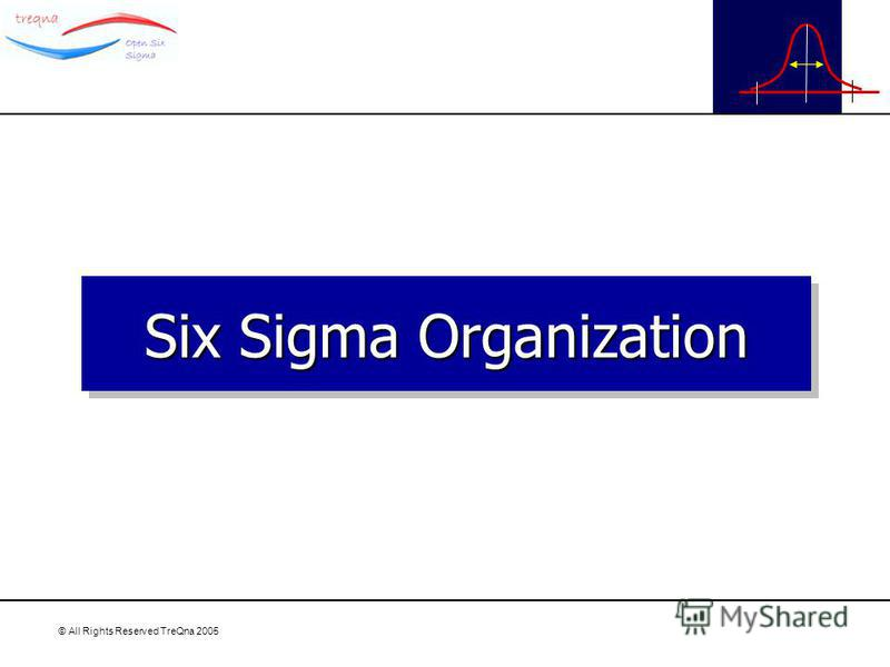 © All Rights Reserved TreQna 2005 Six Sigma Organization