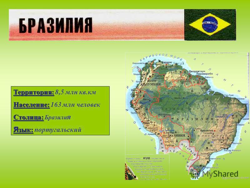 Территория: Территория: 8,5 млн кв.км Население: Население: 163 млн человек Столица: Столица: Бразили я Я зык: Я зык: португальский