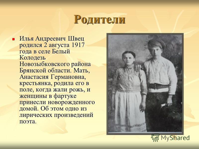 Родители Илья Андреевич Швец родился 2 августа 1917 года в селе Белый Колодезь Новозыбковского района Брянской области. Мать, Анастасия Германовна, крестьянка, родила его в поле, когда жали рожь, и женщины в фартуке принесли новорожденного домой. Об