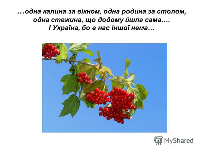 … одна калина за вікном, одна родина за столом, одна стежина, що додому йшла сама…. І Україна, бо в нас іншої нема…