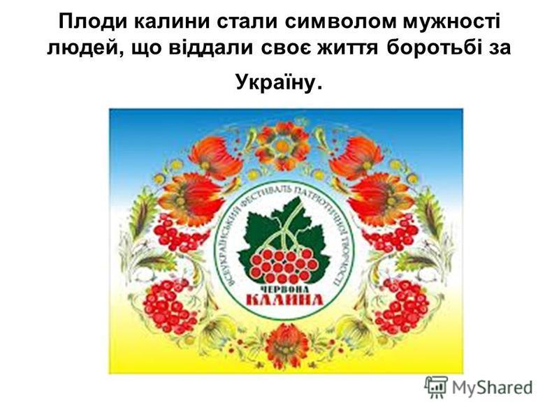 Плоди калини стали символом мужності людей, що віддали своє життя боротьбі за Україну.