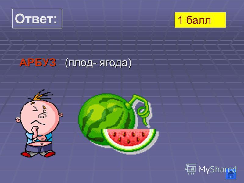 Ответ: АРБУЗ (плод- ягода) 1 балл