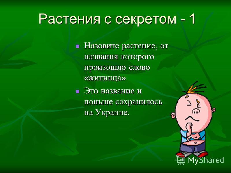 Растения с секретом - 1 Назовите растение, от названия которого произошло слово «житница» Назовите растение, от названия которого произошло слово «житница» Это название и поныне сохранилось на Украине. Это название и поныне сохранилось на Украине.