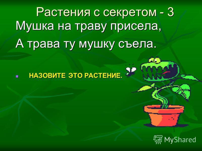 Мушка на траву присела, А трава ту мушку съела. НАЗОВИТЕ ЭТО РАСТЕНИЕ. НАЗОВИТЕ ЭТО РАСТЕНИЕ. Растения с секретом - 3 Растения с секретом - 3