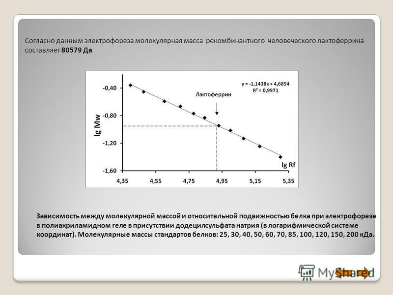 Зависимость между молекулярной массой и относительной подвижностью белка при электрофорезе в полиакриламидном геле в присутствии додецилсульфата натрия (в логарифмической системе координат). Молекулярные массы стандартов белков: 25, 30, 40, 50, 60, 7
