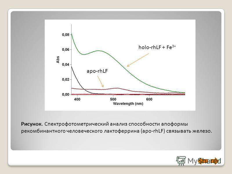 Рисунок. Спектрофотометрический анализ способности опоформы рекомбинантного человеческого лактоферрина (apo-rhLF) связывать железо. apo-rhLF holo-rhLF + Fe 3+