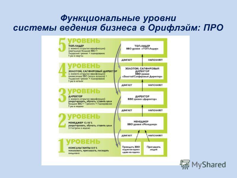 Функциональные уровни системы ведения бизнеса в Орифлэйм: ПРО