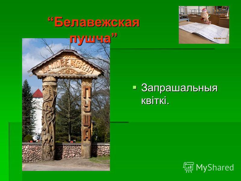 Каменецкая вежа (Белая)