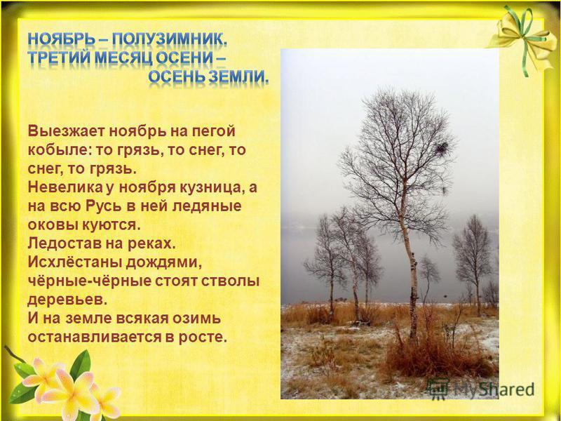 Выезжает ноябрь на пегой кобыле: то грязь, то снег, то снег, то грязь. Невелика у ноября кузница, а на всю Русь в ней ледяные оковы куются. Ледостав на реках. Исхлёстаны дождями, чёрные-чёрные стоят стволы деревьев. И на земле всякая озимь останавлив