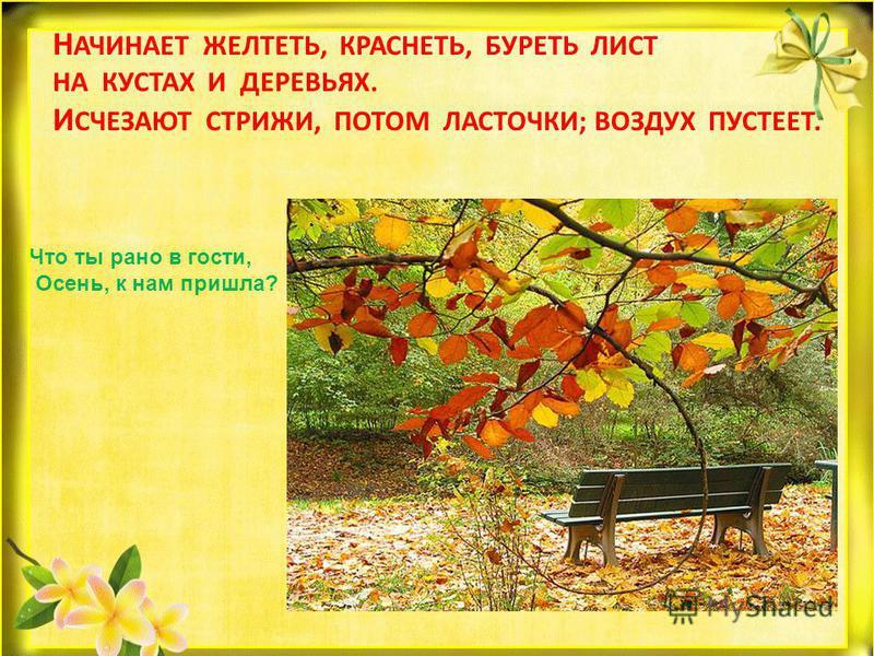Н АЧИНАЕТ ЖЕЛТЕТЬ, КРАСНЕТЬ, БУРЕТЬ ЛИСТ НА КУСТАХ И ДЕРЕВЬЯХ. И СЧЕЗАЮТ СТРИЖИ, ПОТОМ ЛАСТОЧКИ; ВОЗДУХ ПУСТЕЕТ. Что ты рано в гости, Осень, к нам пришла?