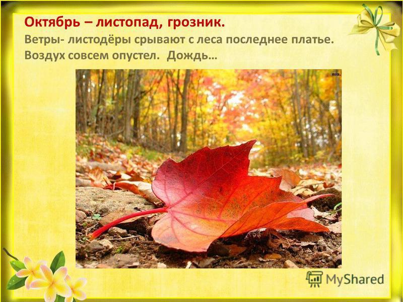 Октябрь – листопад, грозник. Ветры- листодёры срывают с леса последнее платье. Воздух совсем опустел. Дождь…