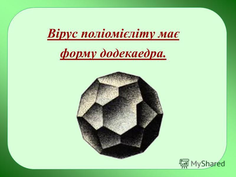 Вірус поліомієліту має форму додекаедра.