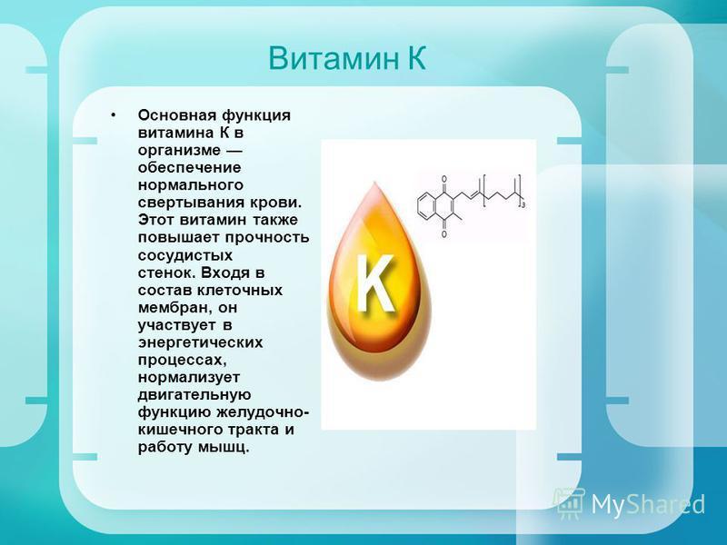 Витамин К Основная функция витамина К в организме обеспечение нормального свертывания крови. Этот витамин также повышает прочность сосудистых стенок. Входя в состав клеточных мембран, он участвует в энергетических процессах, нормализует двигательную