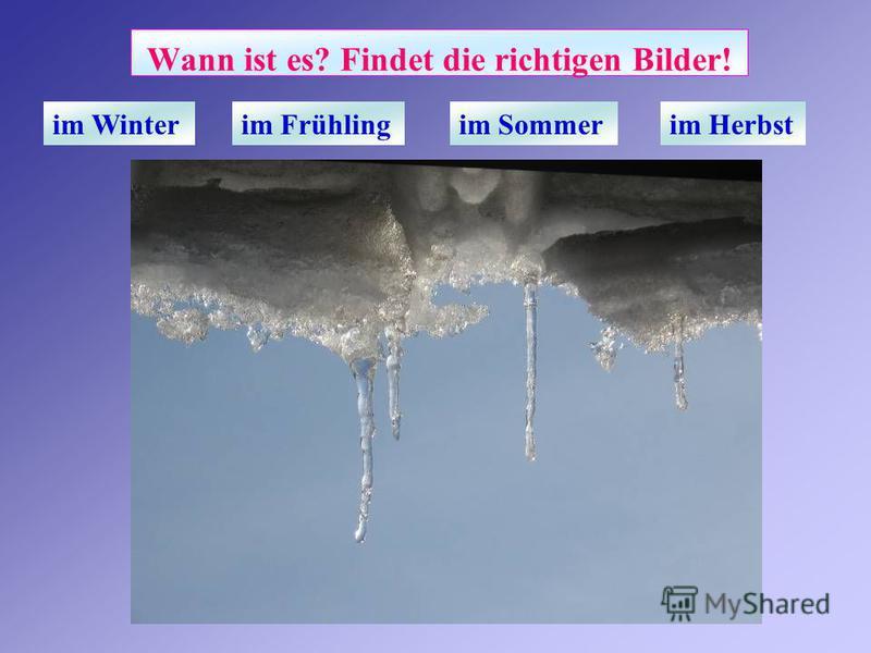 Wann ist es? Findet die richtigen Bilder! im Winterim Frühlingim Sommerim Herbst