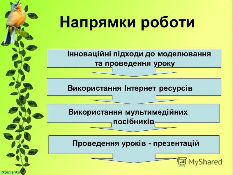 Напрямки роботи Інноваційні підходи до моделювання та проведення уроку Використання Інтернет ресурсів Використання мультимедійних посібників Проведення уроків - презентацій